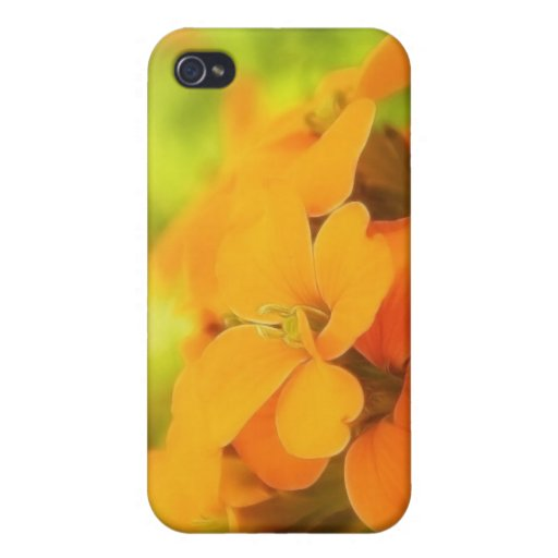 Sun Drenched Siberian Wallflower iPhone 4/4S Case