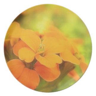 Sun Drenched Siberian Wallflower Melamine Plate