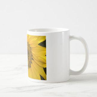 Sun dulce taza básica blanca