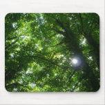 Sun en los árboles alfombrillas de ratones