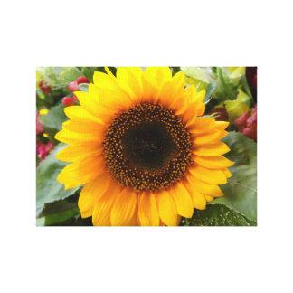 "Sun Flower 24"" x 18"", 1.5"", Single Wrapped Canvas"