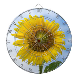 Sun Flower Against Blue Sky Dartboard With Darts