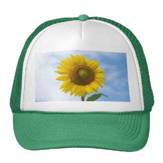 Sun Flower Against Blue Sky Trucker Hat