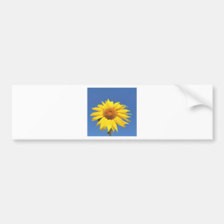 sun flower bumper sticker