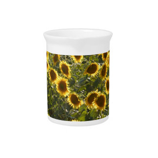 _sun flower field beverage pitcher