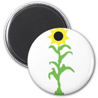 sun flower icon magnets