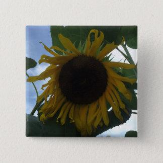 Sun Flower Pinback Button