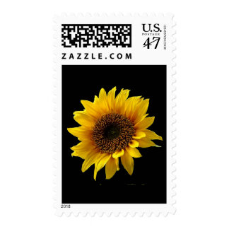 Sun Flower Postage