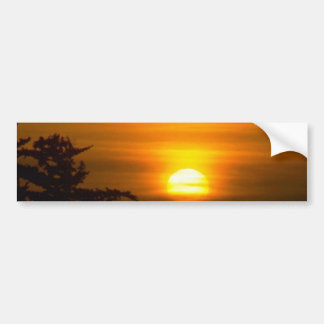 Sun Going Down Over Treetops Bumper Stickers