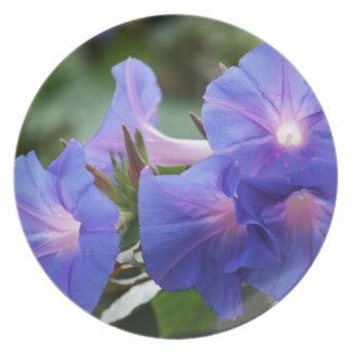 Sun Illuminated Blue and Lavender Morning Glories Plates