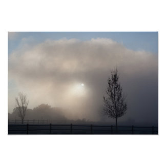Sun in the Mist Poster
