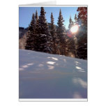 Sun in trees on a ski trail greeting card