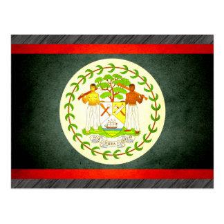 Sun kissed Belize Flag Postcard