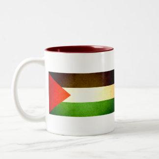 Sun kissed Palestine Flag Mugs