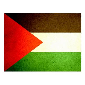 Sun kissed Palestine Flag Postcard