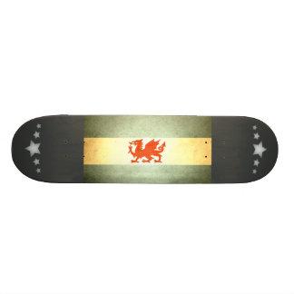 Sun kissed Patagonia Flag Custom Skateboard