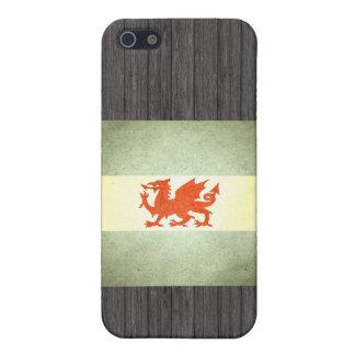 Sun kissed Patagonia Flag iPhone 5 Cases