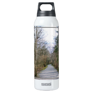 Sun-kissed Winter Branches Thermos Bottle