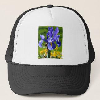 Sun light on blue iris trucker hat