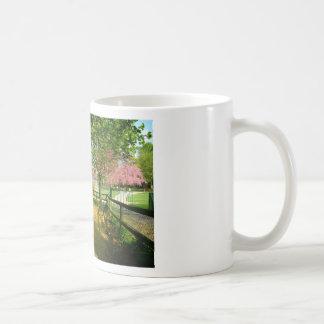 Sun light on Prunus Park Classic White Coffee Mug
