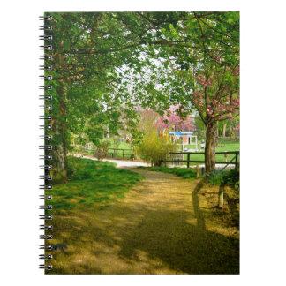 Sun light on Prunus Park Notebook
