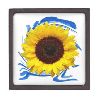 Sun-lights Grace Gift Box