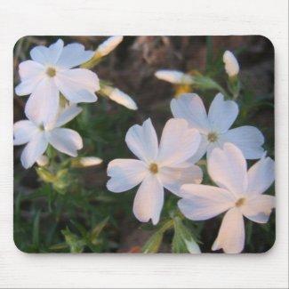 Sun lit floral Mousepad