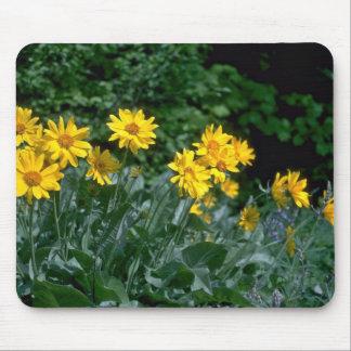 Sun Loving Flowers Mousepads