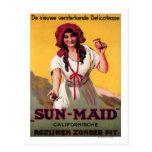 Sun-Maid California Raisin Poster Postcard