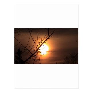 Sun Melt Postcard