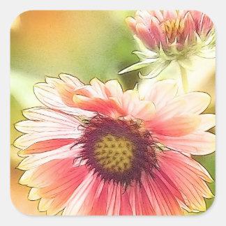 Sun mojó las flores del Gaillardia Colcomanias Cuadradases