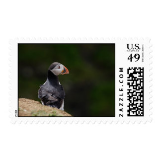 Sun on it's Back Puffin Postage