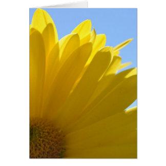 Sun on Petals Card