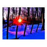 Sun on Snow Post Cards
