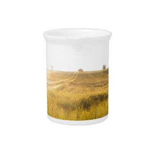Sun over wheatfield drink pitchers