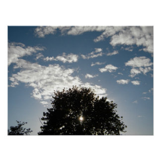 Sun piercing tree in the cloud patterned blue sky poster