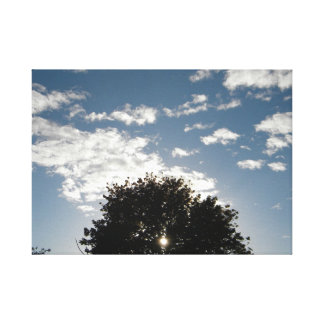 Sun piercing Tree in the clouds Canvas Print