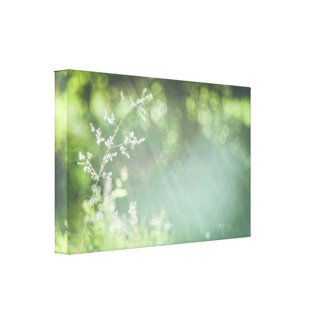 Sun rays and bokeh canvas print