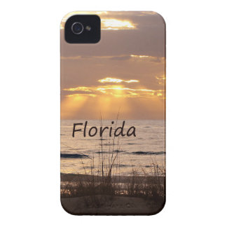 Sun Rays Florida Sunset iPhone 4 Case-Mate Case