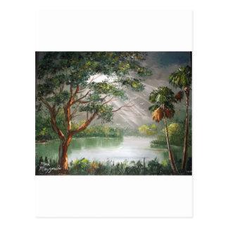 Sun Rays in the Tropics Postcard