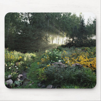 Sun Rays Late September Gardens Mouse Pad