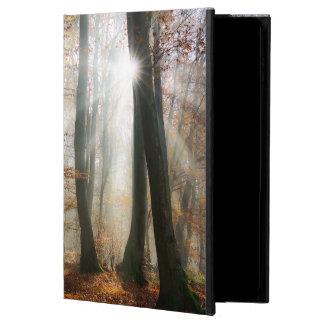 Sun Rays Mystic Misty Forest, hardcase Powis iPad Air 2 Case