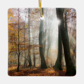 Sun Rays Mystic Misty Scenic Forest - porcelain Ceramic Ornament