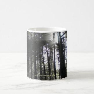Sun rays through the trees coffee mug