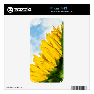 sun rests decal for the iPhone 4