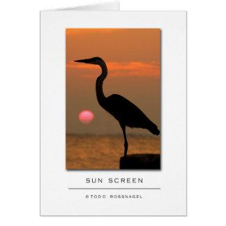 SUN SCREEN copy Card