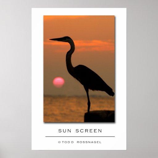 Sun Screen Posters