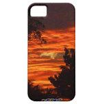 Sun Set iPhone 5 Cases