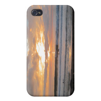 Sun Sets on Snoozing Elephant Seals iPhone 4 Cover