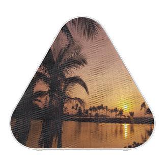 Sun setting on Anaeho'omalu Bay, Big Island, Speaker